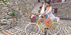 You will see in the worl what you carry in your heart. creig Crippen. (๓คเค๓ςкєєภคภ) Tags: maiamckeenan monso addams blog bycicle dustbunny reign