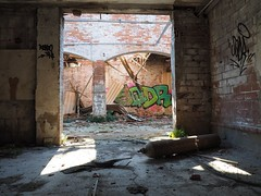 Porta su porta #linee #ombre #grafito #cornice #arco #iluoghidellabbandono #vetreria (bergkamp270) Tags: arco linee grafito ombre iluoghidellabbandono vetreria cornice abbandoned abbandono shadow