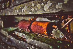 Forgotten (RWGrennan) Tags: forgotten old ruins stone cans beer rock moss moody lichen shelf foundation greene county newyork upstate ny climax age aged rust nikon d610 rgrennan rwgrennan ryan grennan