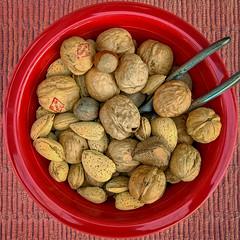Mixed Nuts (Timothy Valentine) Tags: squaredcircle bowl nutcracker brasilnuts pecans hazelnuts 0119 walnuts 2019 almonds eastbridgewater massachusetts unitedstates us
