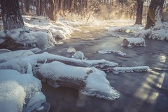 To Winter (Tracey Rennie) Tags: alberta cochrane ice winter snow flare vapour springs creek le bighillspringsprovincialpark morning theisowasamistake