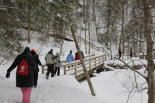 Dog Sledding & Ice Caves of Northern Michigan, January 2019