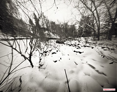 Frozen Creek (DelioTO) Tags: 4x5 blackwhite canada d23 f175 fomapan100 garden landscape ontario panoramic pinhole snow toned trails winter woods