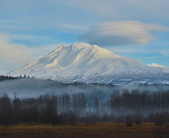 Mt. Adams (bulldog008) Tags: mt mount adams volcano landscape snow sky morning nature trout lake troutlake washington mountain cloud lenticular fog mist beautiful view cascade range usa pnw pacific north west northwest peak autumn season outdoors trees wilderness canon sx60hs