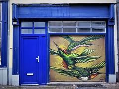 GunT / Antwerpen - 2 feb 2019 (Ferdinand 'Ferre' Feys) Tags: antwerpen anvers antwerp belgium belgique belgië streetart artdelarue graffitiart graffiti graff urbanart urbanarte arteurbano ferdinandfeys