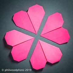 365-2019-045 - Happy Valentine's Day (phil wood photo) Tags: 365 365colorfun 365colourfun color365 colour365 day45 february heart hearts love origami paper pink postit postitnote singlestrobe square valentine