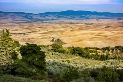 Tuscany (Claudio_R_1973) Tags: tuscany cretesenesi hills valdorcia landscape sunny dry trees italia italy outdoor
