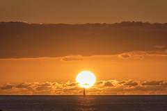 Sailboat in the Sun (Fletch in HI) Tags: nikon d5600 tamron 16300 sunset honolulu hawaii oahu magicisland boats beach water sea clouds sky