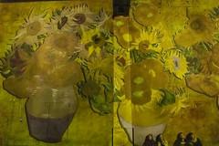 Van GOGH (Pierre ESTEFFE Photo d'Art) Tags: vangogh peinture lumiã¨re atelier projection animation paris seine75 france lumière