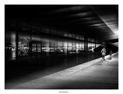 Windows.... (michel di Méglio) Tags: marseille ferrywheels noiretblanc monochrome street rue olympus zuiko reflection windows