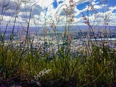 Vista del cerro cordobés (Sebastian.Berto) Tags: cielo villacarlospaz argentina sky verde green trip travel trekking cerro motorola