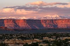 1903 La Sal Mountains (c.miles) Tags: canyonlandsnationalpark lasalmountains mountmellenthin mountpeale mounttukuhnikivatz needlesdistrict potholepoint sunset