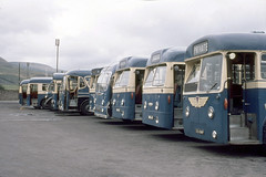 Glorious line up  - September-1971 (AndrewHA's) Tags: bus coach llynfi maesteg south wales line aec leyland step entrance