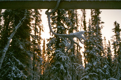 (RelicKnife) Tags: 35mm film canada northwestterritories spectacularnorthwestterritories