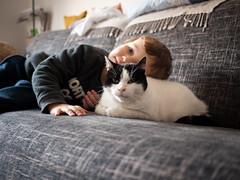 Jules et Lili (Dahrth) Tags: gf1 lumix20mm microquatretiers boy kid chat garçon cat couch canapé