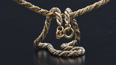 Macro Monday Jewellery (rq uk) Tags: rquk nikon d750 macro micro jewellery nikond750 afsvrmicronikkor105mmf28gifed macromondays