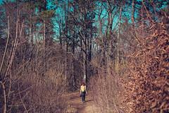 KRIS8088 (Chris.Heart) Tags: erdő buda budapest túra természet forest nature hiking