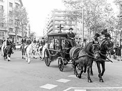 Tres Tombs de Barcelona 2019 (48) (Ismael March) Tags: barcelona trestombsdebarcelona trestombs santantoni blancoynegro