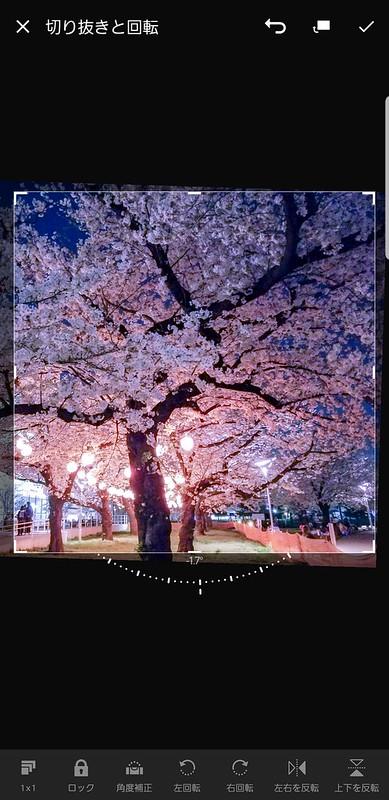 Screenshot_20190405-195326_Lightroom CC