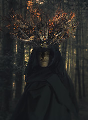 Inis Mona (SCOTT GUSTKE) Tags: druid inismona fantasy fineart dark eerie celtic nature mystical wicca folklore lore mystery forestbathing