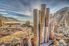 La Piedra Pilings (Michael F. Nyiri) Tags: lapiedrastatebeach malibuca southerncalifornia beach pacificocean rocks