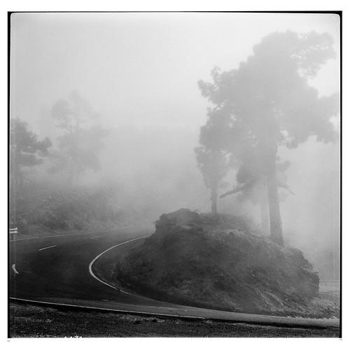 In den Nebel