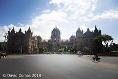 Mumbai - Fort - Chhatrapati Shivaji Terminus railway station (CATDvd) Tags: nikond7500 bhāratgaṇarājya india índia bombai bombay mumbai maharashtra republicofindia repúblicadelíndia repúblicadelaindia भारतगणराज्य september2018 catdvd davidcomas httpwwwdavidcomasnet httpwwwflickrcomphotoscatdvd fort फोर्ट architecture arquitectura building edifici edificio chhatrapatishivajiterminus chhatrapatishivajiterminusrailwaystation estacióchhatrapatishivaji estaciónchhatrapatishivaji victoriaterminus छत्रपतिशिवाजीटर्मिनस estaciódetren estaciondetren trainstation flickrtravelaward
