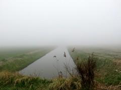 's Heerenhoek (Omroep Zeeland) Tags: mist bij de natuurlijke oever