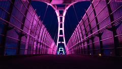 Tynehead Portal 2 (Sworldguy) Tags: walkway bridge illuminated magenta wideangle wideshot perspective symmetry leadinglines structure architecture engineering steel arches surrey britishcolumbia sonya73 a7iii alpha path elevated highway night nightscene landscape landmark lights geometric abstract lines vanishingpoint structural
