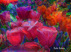 Tulip Frenzy (brillianthues) Tags: spring flowers floral tulips nature garden abstract colorful collage photography photmanuplation photoshop