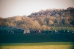 Landscape - Schleswig-Holstein - Germany