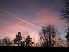 ....beruhigend.... (elisabeth.mcghee) Tags: bäume büsche himmel wolken abendhimmel sunset trees bushes sky clouds oberpfalz upper palatinate landschaft landscape