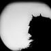 Ernesto on the moon (LinusVanPelt.77) Tags: viola