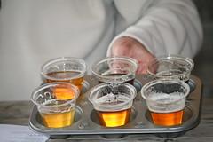 Beer Tasting (eyriel) Tags: drink alcohol brew brews glass glasses taste tasting