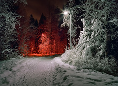 The Snowy Night Shot III (Mikael Neiberg) Tags: filmisnotdead analogfotographing longexposure nightphotographing lights star winter finland snow sky tree trees footpath woods park warmcold complements