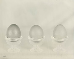 Three standing eggs (Rosenthal Photography) Tags: kollodiumreste 8x10 epsonv800 vocecamera8x10tc 114 eier stilleben nasplatte 20190201 grosformat ilfordrapidfixer kollodium schneiderkreuznachxenar300mm35 analog kunstlicht oldmixedcollodion collodion wetplate collodionwetplate stillife eggs artificiallight voce tc sk schneiderkreuznach xenar 300mm f35 f8 47sec tintype aluminotype epson v800