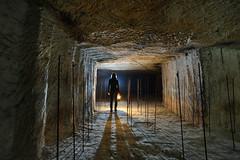 Une ancienne chambre de culture pour les shiitake. (flallier) Tags: carrière souterraine tuffeau underground chalk quarry shiitake champignonnière champignons mushroomfarm mushroomcultivation mushroom pics silhouette lampeacétylène lampecarbure a7 carbure acétylène acéto souterrain subterranean nikon d800 zeiss distagon
