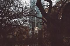 Chicago Winter (Quinn Milton Photography) Tags: 35mm film 35mmfilm kodak minox istillshootfilm filmisnotdead filmphotography chicago winter city analog analogue staybrokeshootfilm