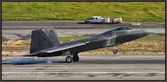04-4074 USAF United States Air Force 90th FS (Bob Garrard) Tags: 044074 usaf united states air force 90th fs lockheed martin f22a raptor anc panc
