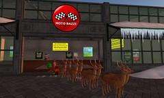 Morning Delivery (motobazzi) Tags: christmas holiday motobazzi sleigh reindeer snow sign store awning icicle secondlife sl virtual kaiwa region sim avatar mesh