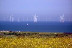 Sailing past (billnbenj) Tags: barrow cumbria walneyisland irishsea turbine windturbine windfarm sailingboat boat sailing