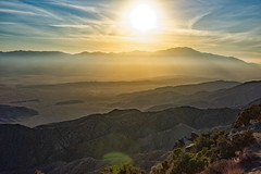 untitled (95 of 125).jpg (xen riggs) Tags: desert california joshuatreenationalpark february2018