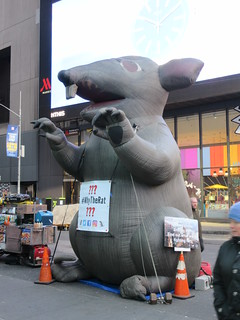 2019 Giant Strike Rat Balloon Corner of 45th St NYC 3698