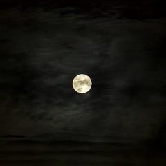 Moon (Stefano Rugolo) Tags: stefanorugolo pentax k5 pentaxk5 kmount vivitar80200mmf4macrofocusingzoommc moon sky handheld crop clouds manualfocuslens manualfocus manual vintageprimelens