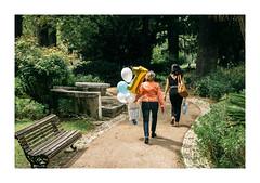 Jardim da Estrela, Lisboa (Sr. Cordeiro) Tags: jardimdaestrela lisboa lisbon portugal jardimguerrajunqueiro jardim park street rua estrela balões ballons aniversário festa party anniversary panasonic lumix gx80 gx85 14140mm