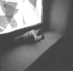 Quiet Windowsill (Jack Ishlandt) Tags: pinhole 6x6 2x2 macro closeup unusual mundane bw monochrome paper caffenol shoji filter blue yellow window windowsill light