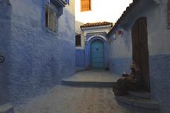 Chefchaouen, Morocco, January 2019 D700 249 (tango-) Tags: chefchaouen bluecity villaggioblu bluevillage morocco maroc 摩洛哥 marruecos марокко المغرب