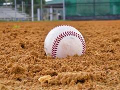 Play Ball! (The Vintage Lens) Tags: homerun baseballs ptich summertime bat balls strikes