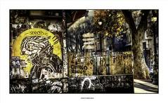 Stray Cat Blues... (michel di Méglio) Tags: streetart street graffiti marseille chat cat olympus lumière ville city color couleurs rue