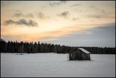 Lada på vinterkvällen (Jonas Thomén) Tags: lada barn hölada haybarn field åker snö snow skog forest moln clouds sunset solnedgång kväll evening winter vinter